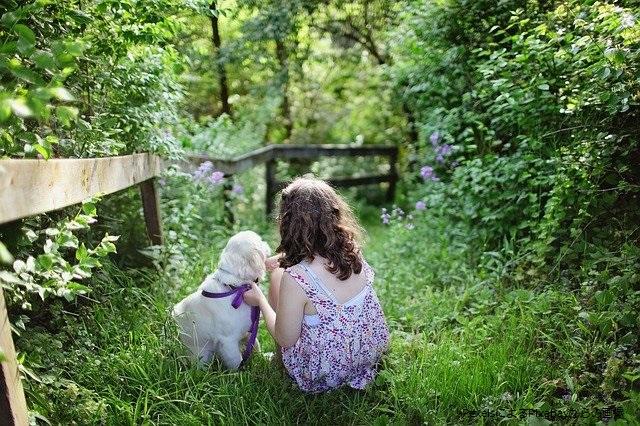 森の中の仔犬と女の子